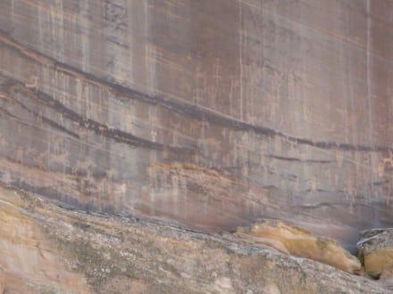 Ein ganzer Fels voller Felszeichnungen - Canyon de Chelly National Monument
