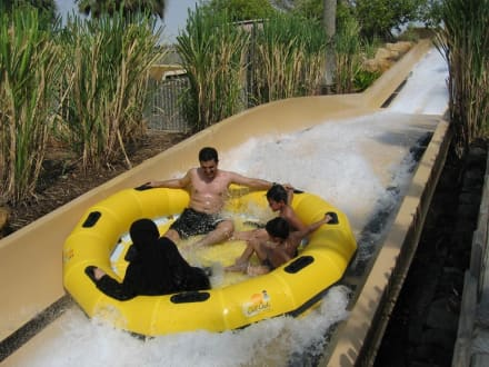 Wild Wadi - Wild Wadi Water Park