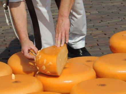 Probeanstich - Käsemarkt