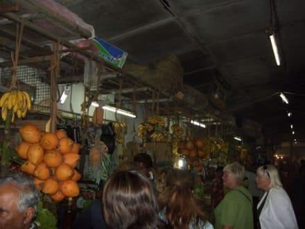MArkt - Wochenmarkt