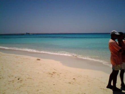 das Meer bei den Giftun Inseln - Giftun / Mahmya Inseln