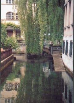 Bach mit Forellen und Schwänen - Altstadt Geislingen an der Steige