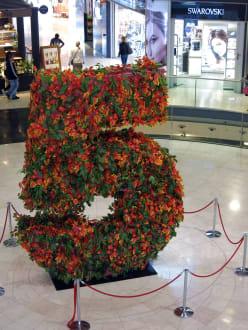 Die Bulemfünf feiert das 5. Jahr - Einkaufszentrum Las Arenas