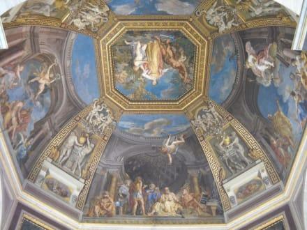 Bildansicht - Vatikanische Museen