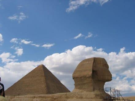 Pyramide am Rücken - Sphinx von Gizeh