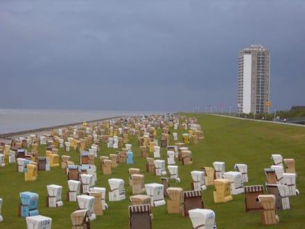 Der grüne Strand von Büsum! - Strand Büsum