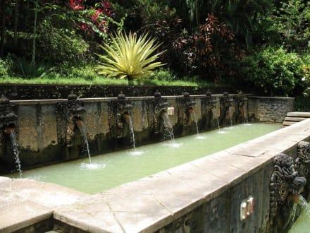 Badebereich mit Frischwasserquellen! - Hot Springs