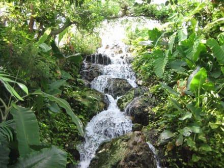 Wasserfall - Freizeitpark Xcaret