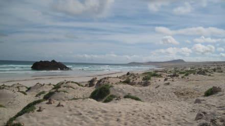 Exclusivtour zum Schiffswrack - Schiffswrack Cabo Santa Maria