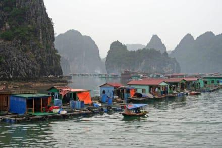 Fischerhäuser in Halong - Halong Bucht