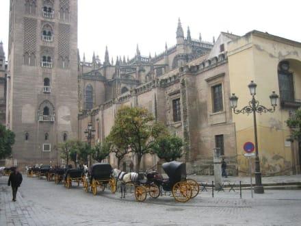 Kutschen vor der Kathedrale - Kathedrale von Sevilla