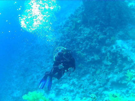 Strand - Tauchen Sharm el Sheikh