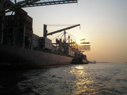 Abendstimmung - Hafenrundfahrt Hamburg