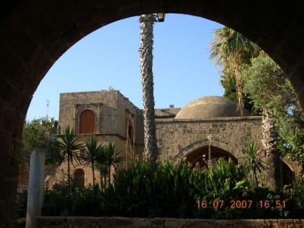 Kloster Agia Napa - Kloster Ayia Napa