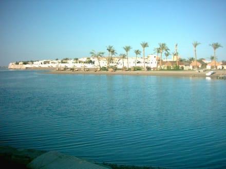 Ausflug nach el Gouna - Hafen Abu Tig Marina