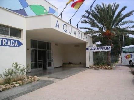 Eingang - Aquarium (existiert nicht mehr)