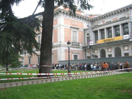 Sonntägliche Warteschlange - Museo Nacional del Prado