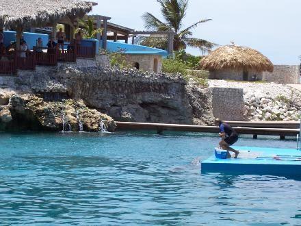 Ocean World - Ocean World Adventure Park