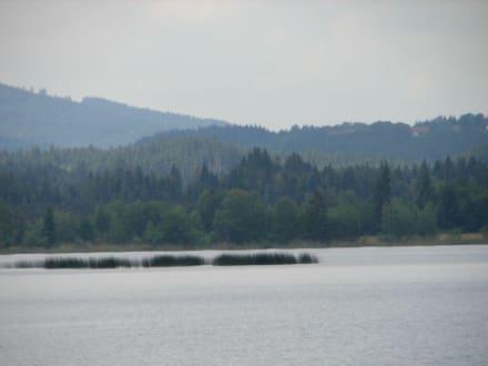 Blick vom Schiff über den See  - Staffelsee Murnau