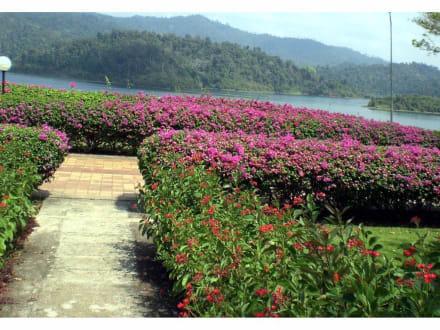 Ratcha Prabha Staudamm - Rundreise Südthailand