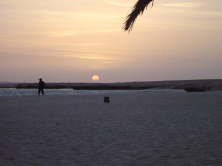 Sonnenuntergang auf Giftun! - Giftun / Mahmya Inseln