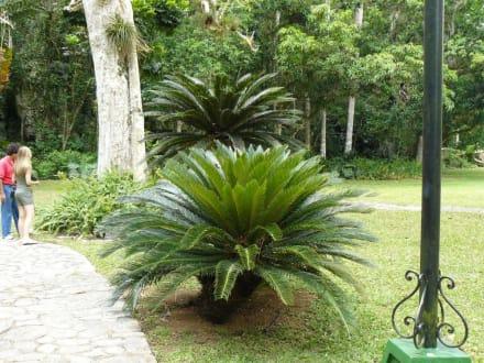 Tropisches Paradies - Vinales Tal