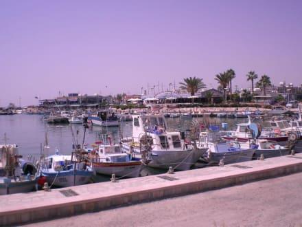 Haven - Fischereihafen Ayia Napa/Agia Napa