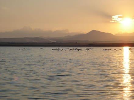 Sonnenuntergang - Salzsee