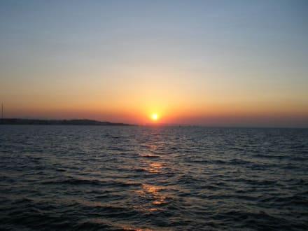 Sonnenuntergang beim Ausflug - Delfinschwimmen Delfine & Meer