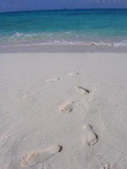 San Andres - Johnny Cay Insel - Insel Johny Cay