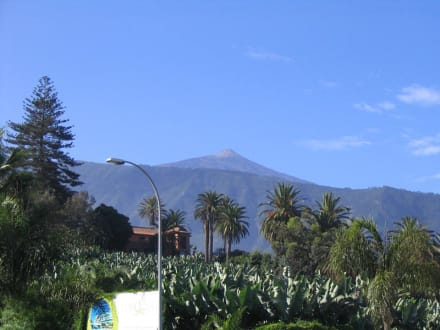 El Teide - Teide Nationalpark