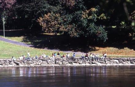 Sonnenbad in der Mittagspause - Waitomo River