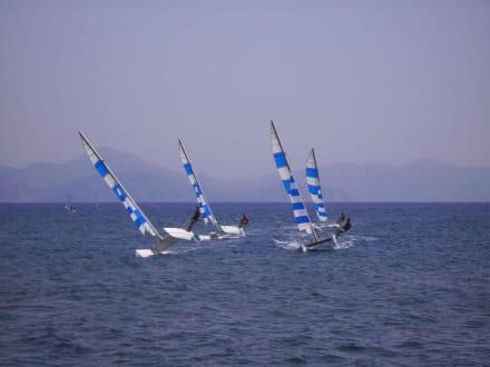 Segelsport pur - Segel- und Surfschule Fit for Sail