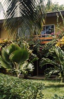Die Gartenanlage des Manchebo Beach - Garten des Manchebo Beach