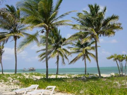 Strand von Santa Lucia - Santa Lucia