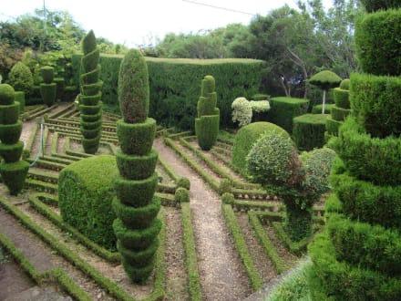 Gartenarbeit bild botanischer garten funchal in funchal for Was kostet gartenarbeit