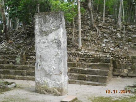 Stelen (die Geschichtsbücher der Maya) - Calakmul
