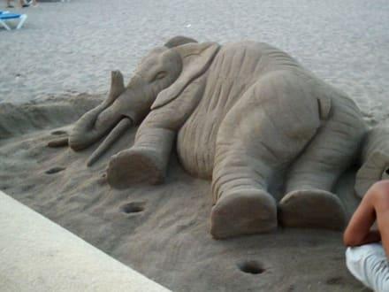 Elefant aus Sand - Strand Can Picafort