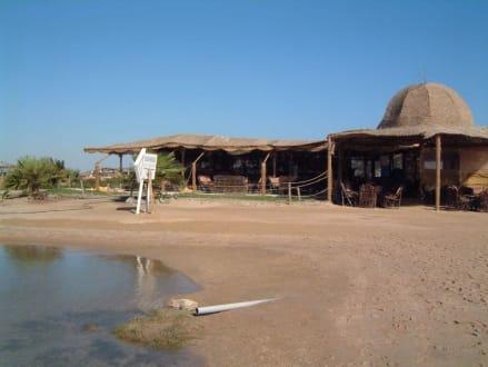 Beach Bar - Mangrovy Beach