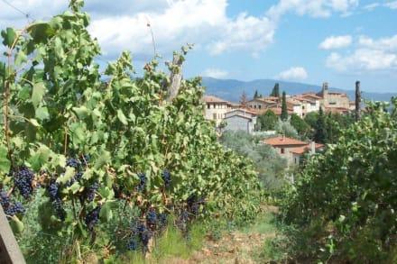 ein romantischer Ort imitten von Weinreben - San Leolino di Bucine