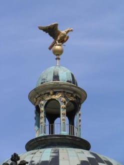 Adler im Schloßpark Sans Souci - Schlosspark Sanssouci