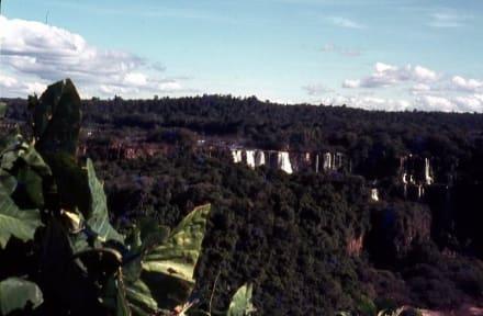 Die Iguazu-Wsasserfälle aus der Ferne - Iguassu / Iguazu Fälle