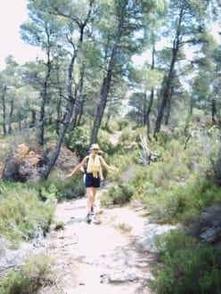 Wanderweg - Wandern Metamorphosis