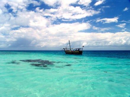 Ausflugsboot - Delfin Tour Diani Beach