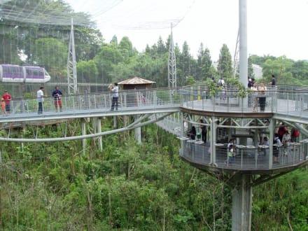 Freiflughalle - Jurong Bird Park