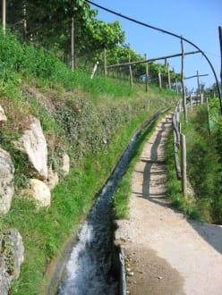 Tscherms - Castel Lebenberg