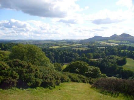 Aussicht vom Scott´s View - Scott's View