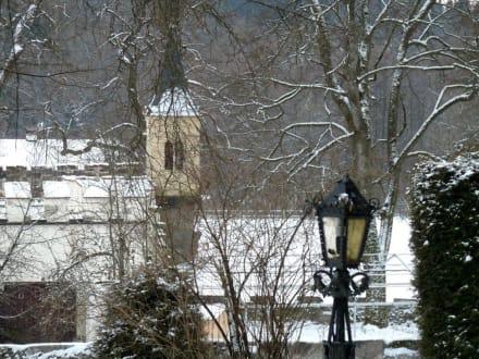 Romantischer Blick - Schloss Egg