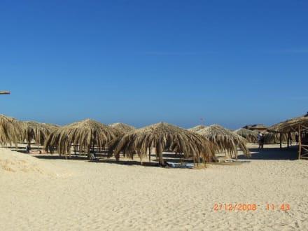 Sonnenschutz aus Palmwedel - Giftun / Mahmya Inseln