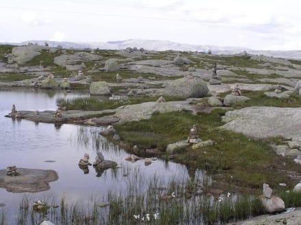 Impressionen der Hochgebirgslage - Lysefjord